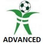 Yeovil Advanced club badge