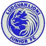 Ludgvan Lions club badge