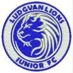 Ludgvan Lions junior club badge