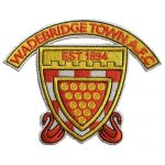 Wadebridge Town AFC Junior club badge