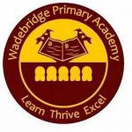 Wadebridge Primary Academy – Staff school badge