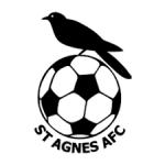 St Agnes AFC club badge